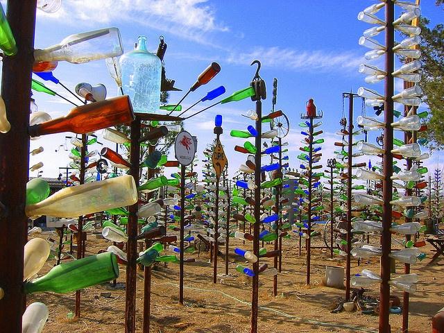 Bottle Forest